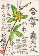 7fuku070507