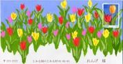 Tk_eft_tulip