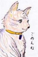 Yukie070425