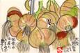 七福字さんの絵てがみ ~玉葱