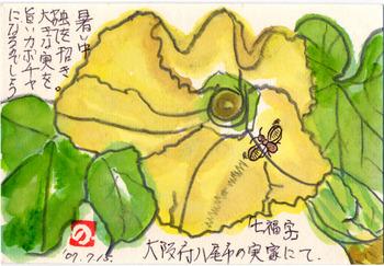 七福字さんの絵てがみ ~カボチャの花と虫