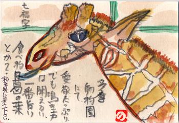 七福字さんの絵てがみ ~キリン
