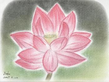 シータさんのパステル画 ~蓮の花
