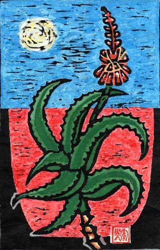 奄美の風さん作 『アロエの花』