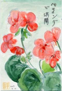 れんげさんの絵てがみ ~赤い花