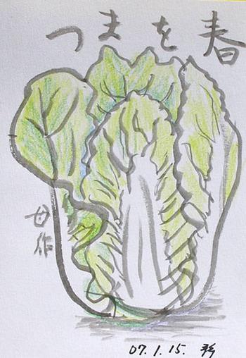静香さんの絵てがみ~白菜