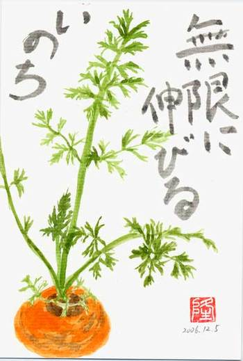 Carrot02