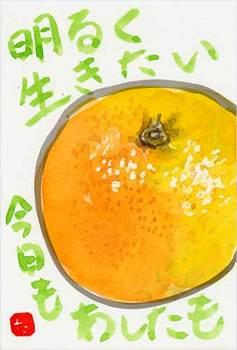 グレープフルーツ3