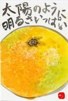グレープフルーツ2