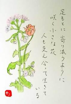 支え合う花たち